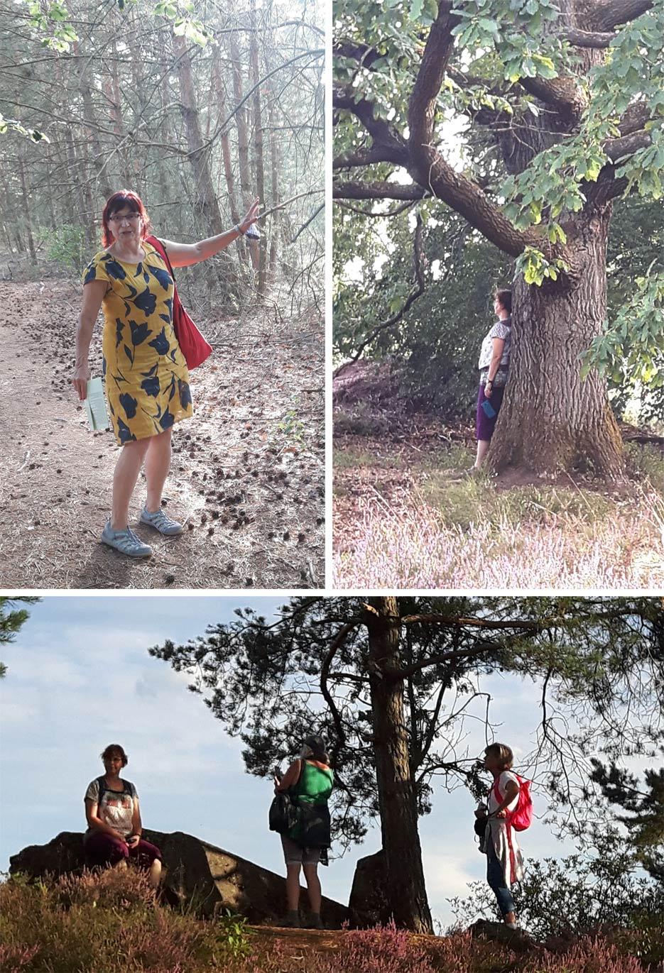 meditativer Spaziergang in der Mehlinger Heide